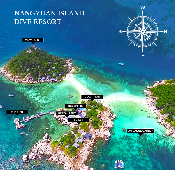 Nangyuan Island Dive Resort Visit Amazing Near Koh Tao And Stay In One Of The Most Unique Places On Earth Three Islands Astounding
